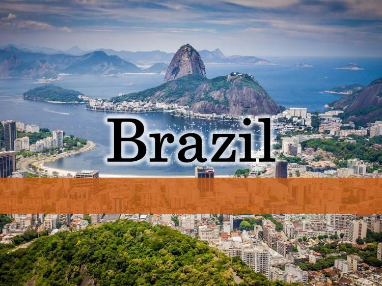 ブラジル進出ブログ
